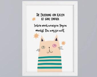 Cats education - art print, unframed