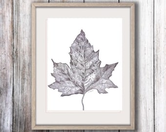 Pencil sketch, Graphite drawing, Fall Original sketch, nature drawing, Graphite sketch, Leaf art, black and white art