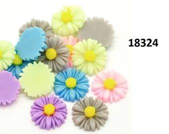 Flowers, flowers, Margarithen, color, 16mm, 13mm, Chrysantemen