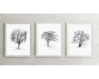 Tree art - set of 3 Giclee prints - oak Tree drawing  - california pepper Tree illustration - zen drawing -  image tree sketch tree