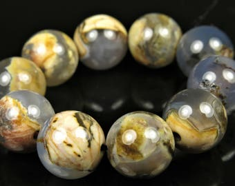 Unique Skinned Blue Chalcedony Agate Round Beads - 11mm - 10 beads - B7066
