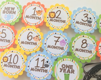 Jungle Safari First Birthday Party - First Year Photo Clothespin Banner - Safari Party Decorations - Picture Banner - Zoo Animals Decor