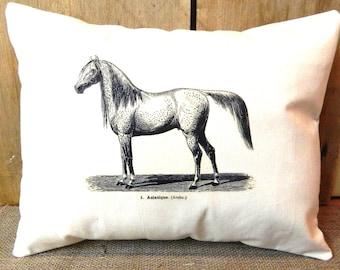 Horse Pillow - Arabian Horse Image Full Size 100% Cotton Canvas - Pillow Form Included - Equestrian Pillow Farmhouse Decor