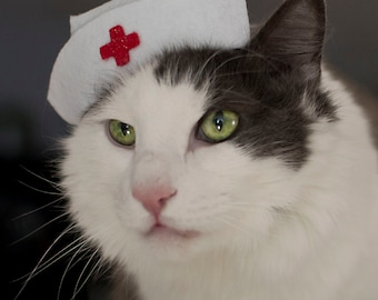 Nurse Kitty Cat Hat