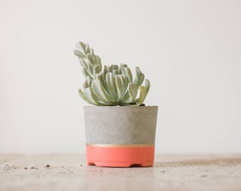 Large Concrete Planter, Coral & Gold
