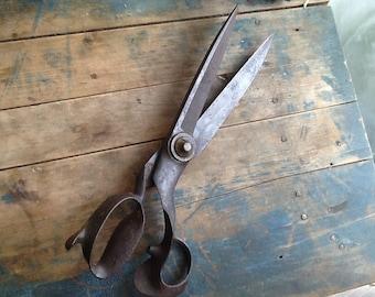 Whooping BIG pair of industrial scissors