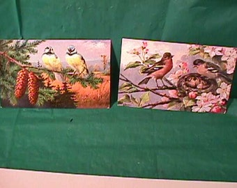 Two Vintage  1910's  Bird  Postcards  Signed by German Artist Alfred Schonian  T.S.N. Series