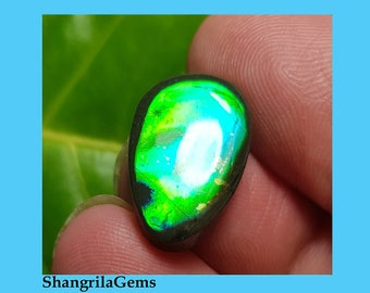 17mm Ammolite designer cabochon from Alberta, Canada. Conflict free 17 by 13 by 4mm