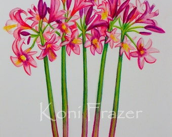 Pink flower art,  Pink Amaryllis-Belladonna, fun wall decor