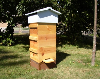 Bee-friendly sustainable Warré  Beehives