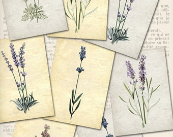 Lavender ATC 2.5 x 3.5 inch printable cards scrapbooking paper crafting diy craft instant download digital collage sheet - VDATVI0853