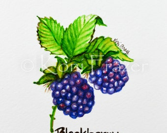 Very berry blackberry, original watercolor painting 5x7, ready to mat and frame