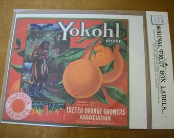 Vintage Prints Fruit Crate Labels NIP Citrus Growers 1900s to 1938 Advertising Art