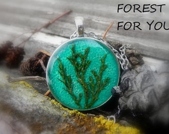 Spring Plant Necklace, Pressed Juniper Resin Pendant, Nature Inspired Terrarium Jewelry, Real Flower Inside, Special Occasion Jewelry
