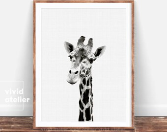 Giraffe Print, Giraffe Wall Art, Nursery Animal Prints, Giraffe Art Prints, Nursery Art, Nursery Decor, Nursery Wall Art, Nursery Prints