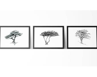 Tree art - set of 3 prints - cypress Tree drawing  - bonsai Tree illustration - zen drawing -  image tree sketch tree decor black grey