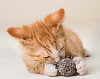 Organic Wool Dust Bunnies Cat Toy