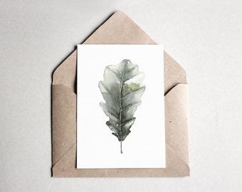 Watercolor Postcard Oak | A6 | Kunstdruck