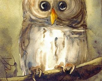 Owl Art Print, Original Bird Art,  Large Owl Art