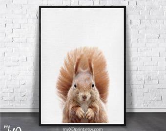 Baby Room Print, Modern Animal Art, Nursery Woodland Print, Squirrel Art, Printable Art, Forest Animals, Digital Download, Baby Animal Print