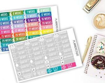 Pregnancy Planner Stickers, Pregnancy Stickers, Pregnancy Weekly Stickers, Pregnancy Doctor stickers, - MC 0017