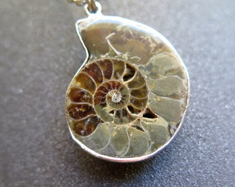 rustic ammonite necklace. mens fossil jewelry.
