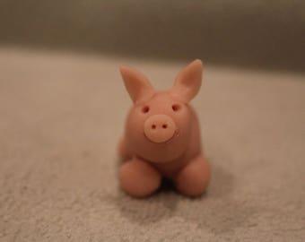 Pig, baby pig, cute little pig, piglet