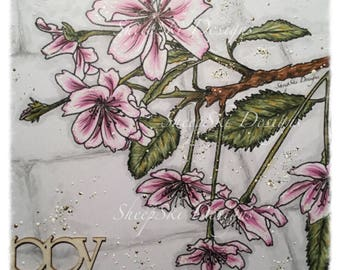 Jean's Cherry Blossom - image no 102