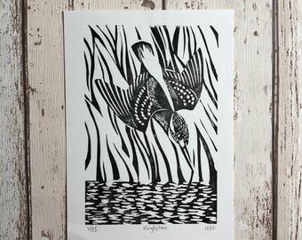 Kingfisher bird linocut print - limited edition