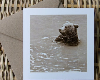 SPA, European Brown Bear Bathing, Art Card, Bear Greeting card, Nature photography, Humour