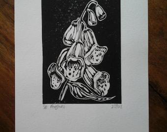 Foxglove. Original Lino Cut Print.