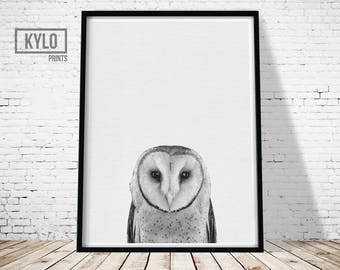 Owl Print, Instant Download, Nursery Decor, Owl Photography, Photography Print, Animal Print, Safari Animals, Owl Poster, Nursery Animals