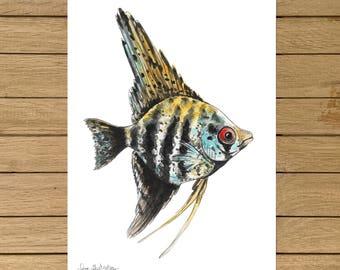 "Zebra Angelfish, Topical Fish, Giclée Print, Watercolor illustration, Wall Art, Home Decor, Nursery Decor, A5, 8.5""x11"", A4, A3, 13""x19"""
