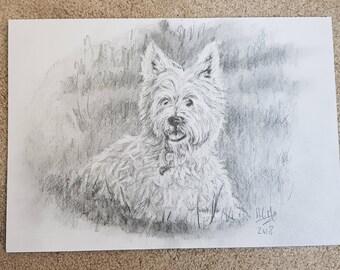 Westie Dog Fine Art West Highland Terrier Dog Portrait Scottie Graphite on Paper Original