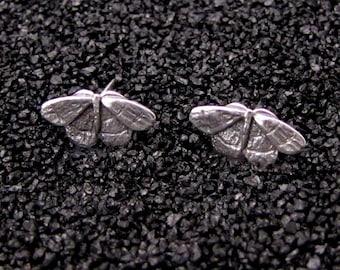 Tiny Moth Earrings
