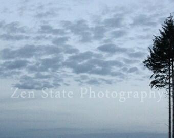 Dusk Clouds Photograph. Tree Photo Print. Nature Photography Print. Landscape Photo Print, Framed Photography, or Canvas Print. Home Decor.