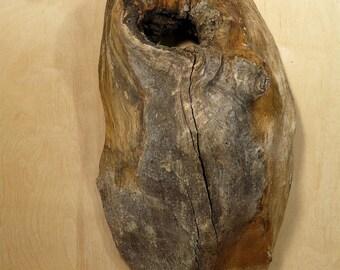 Weird Wood - Wall Hanging - Photo Prop (WW01)
