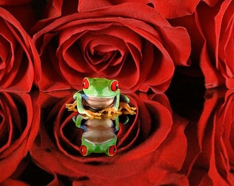 Red Roses, Flower Art, Frog Art, Red, Rose
