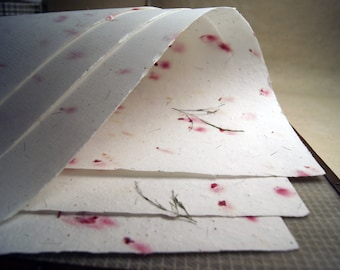 """Red Petals, Treefern and Seeds Handmade Paper 18"""" x 24"""" deckle edge - 3 sheets #59s Parent Sheets"""