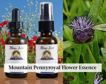 Mountain Pennyroyal Flower Essence, 1 oz Dropper or Spray for Positive Thinking, Expelling Negativity Picked up From Others