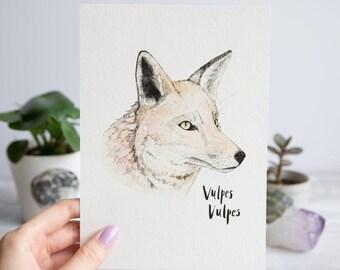 Fox | A5 Giclée Print