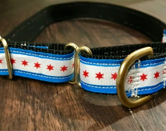 Chicago flag martingale dog collar