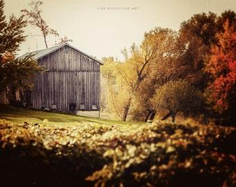 Farmhouse Decor, Autumn Decor, Fall Decor, Rustic Home Decor, Rustic Decor, Print of Barn in Fall Colors, Barn Picture in Autumn.