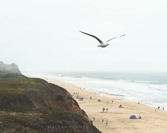 Art de plage Beach, en Californie, Photo plage photographie, décor de plage, mouette Print, côtières Wall Decor, Côte de la Californie, Beige,