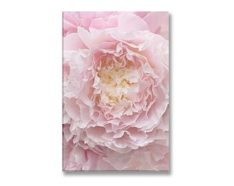 Peony Photo on Canvas, Ruffles, Fine Art Photograph Printed on Gallery Wrapped Canvas, Large Wall Art, French Home Decor