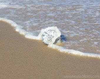 Beach Photography, Ocean Print, Seashell Photograph, Beach House Coastal Wall Art, Beach Art, Ocean Wave Photo, Cape Cod Decor, Seashore Art