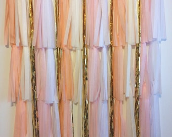 Blush Photo booth backdrop wedding party