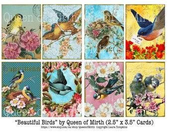 BEAUTIFUL BIRDS ATC colorful nature tags  printable digital download collage sheet journaling card making scrapbook