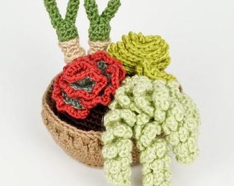 PDF Succulent Collection 4, four realistic potted plant CROCHET PATTERNS