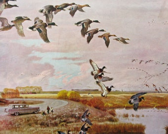 1957 Ducks Flying South for the Winter- John Clymer Art - 1950s Saturday Evening Post Cover - Fall Bird Migration - Gift for Duck Hunter